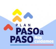 Actualización Plan Paso a Paso: finaliza Estado de Excepción